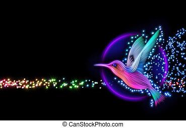 3d render of colibri bird - hummingbird striped silhouette with stars