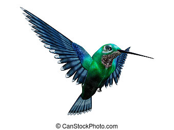 3D rendering of a humming bird isolated on white background