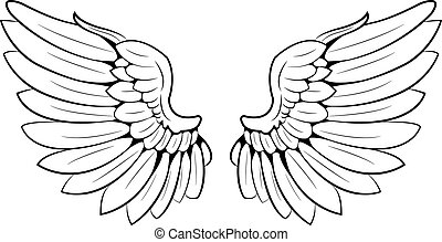 a pair of wings
