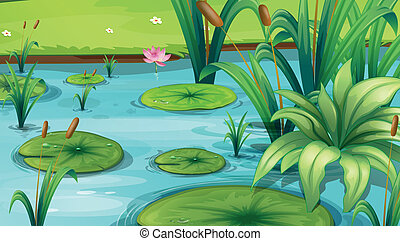 Illustration of a pond with many plants