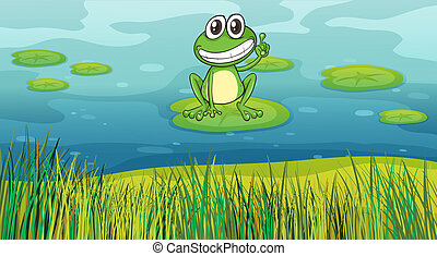 A smiling frog in the pond