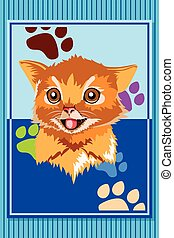 Cat Animal Poster