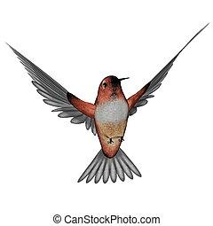 Allen hummingbird - 3D render