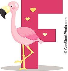 Alphabet F for Flamingo