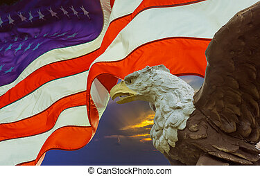 American bald eagle with the flag on United States of America in the background