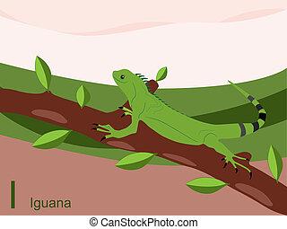 Animal alphabet, I for iguana