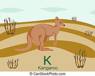 Animal alphabet, K for kangaroo