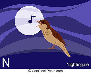 Animal alphabet, N for nightingale
