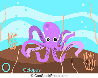 Animal alphabet, O for octopus