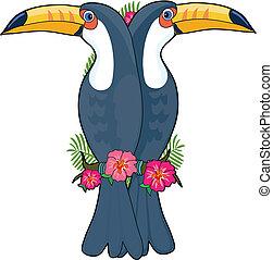 Animal Alphabet Toucan