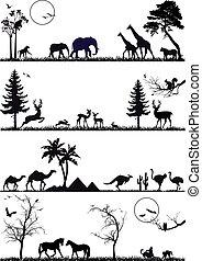 animal background set, vector