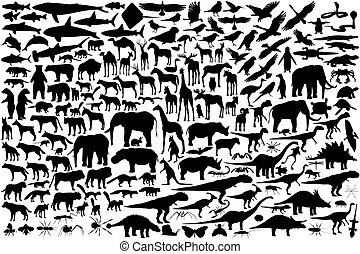 Diverse set of editable vector animal outlines