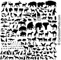 hundreds of animal silhouettes with high detail