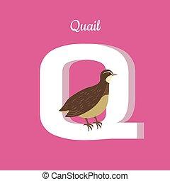 Animals Alphabet. Letter - Q