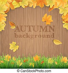 Autumn leaves wooden boards grass