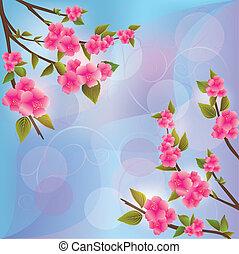 Background with sakura blossom