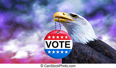 Bald eagle holding badge for voting in 2020 American elections in his beak.