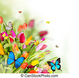 Beautiful spring flowers with butterflies