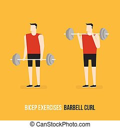 Bicep Exercises. Barbell Curl.