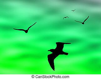 Birds flight