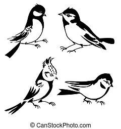 birds silhouette on white background, vector illustration