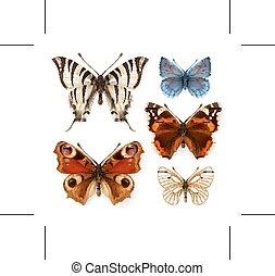 Butterflies vector icons