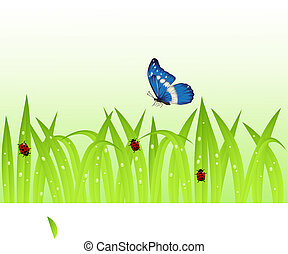 Butterfly and grass