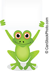 vector illustration of frog