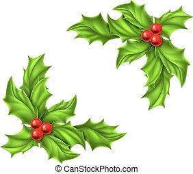 Christmas Holly Design