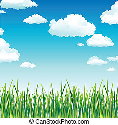 Clouds in the Sky above Green Grass