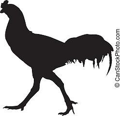 Cock Chicken silhouette vector