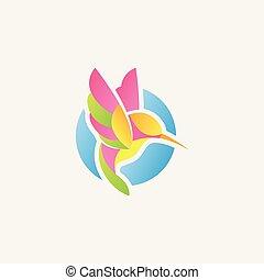 colibri logo design, humming bird icon