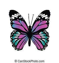 Colorful butterfly isolated on white background. Vector illustration.