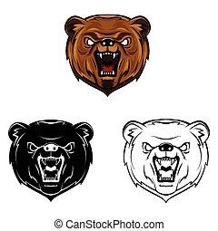Coloring Bear book caracter