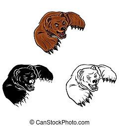 Coloring book Bear caracter