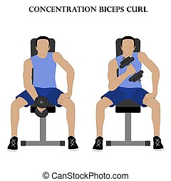 Concentration biceps curl exercise strength workout vector illustration