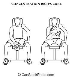 Concentration biceps curl exercise strength workout vector illustration outline