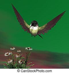 Costa's hummingbird - 3D render