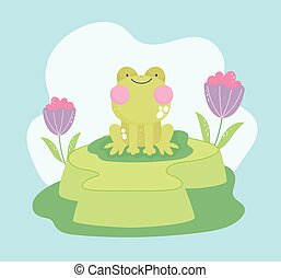 cute frog on grass