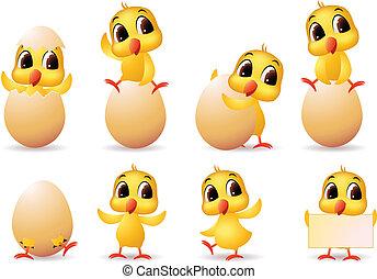 cute little chicks cartoon collection