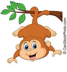 Cute monkey hanging on a tree branc