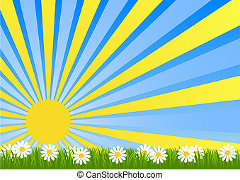 Dawn Flower Fields flooded with sunlight vector illustration