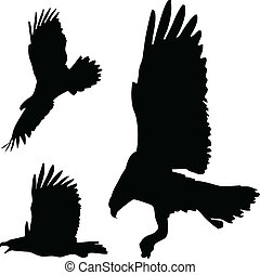 eagles action vector silhouettes