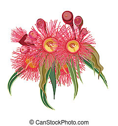 Eucalyptus bunch of pink flowers Vector Illustration