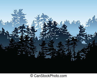 Silhouette of an evergreen forest.