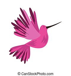 exotic humming bird fauna isolated icon