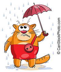 fat cat under a small umbrella