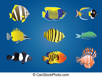 Vector illustration of exotic fishes on a blue background