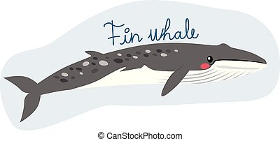 Large fin whale illustration underwater with text