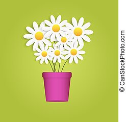 Flora Daisyl Design Vector Illustartion
